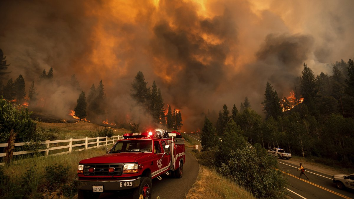Firefighters battle the Tamarack Fire in the Markleeville community of Alpine County, Calif.,...