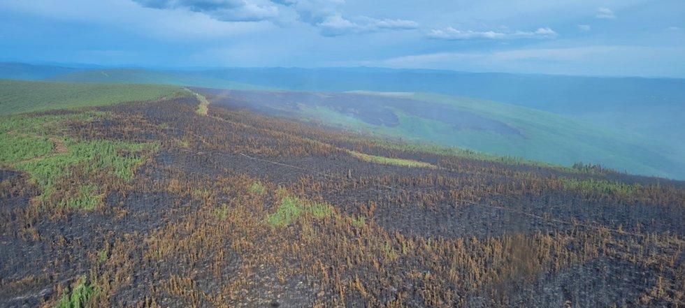 A fuel break on Haystack Mountain that helped to slow the progress of Haystack fire near...